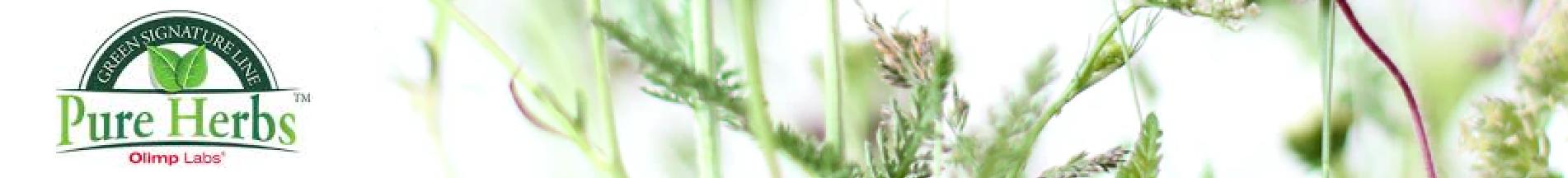 Pure Herbs (1)